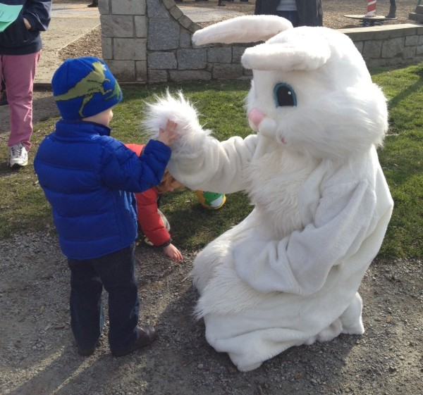 Blue Boy and the Easter Bunny